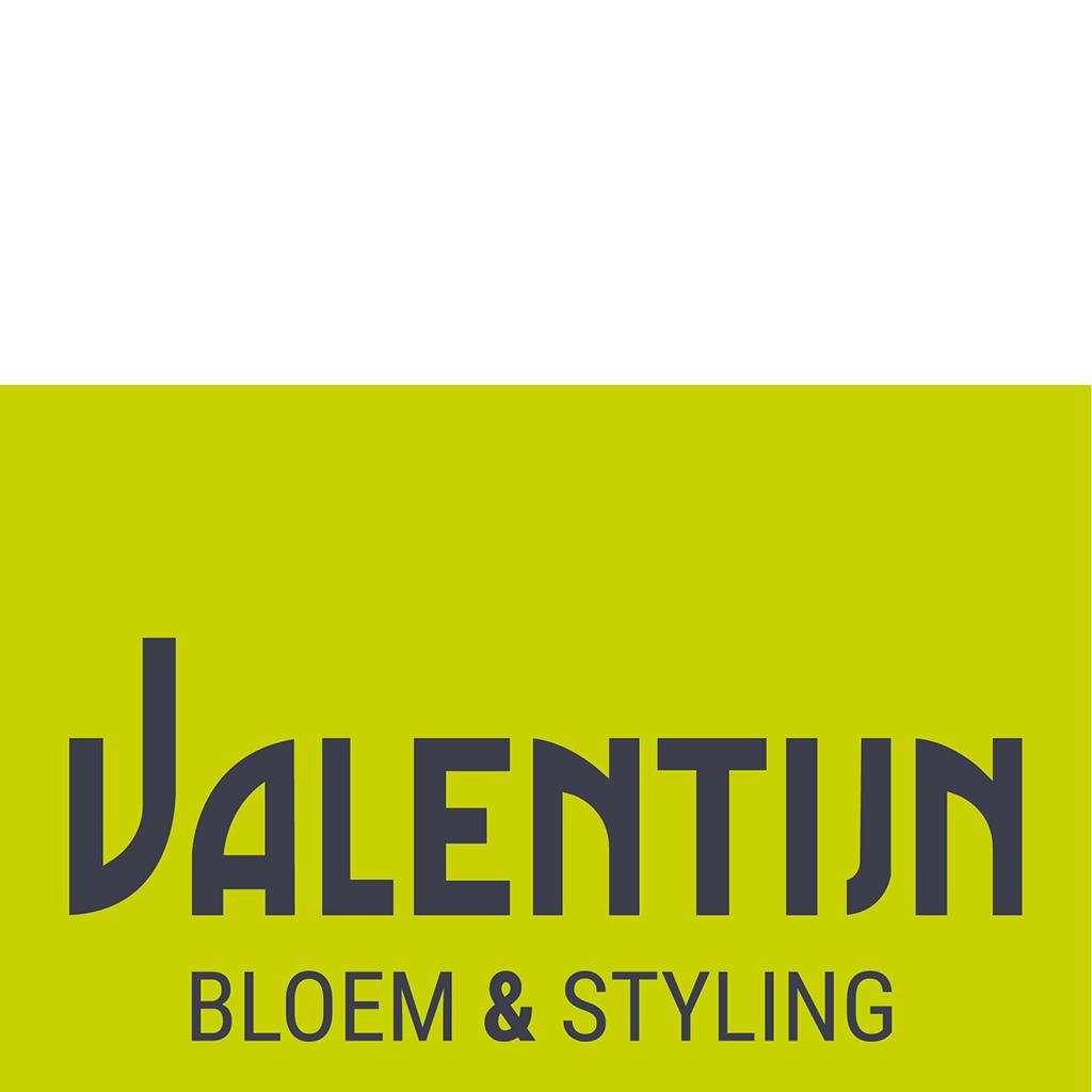 Logo Valentijn Sneek